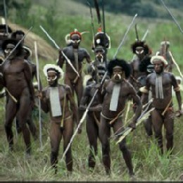 Korowai Tribe Adventure - Tour Packages | www putrapapuatours com